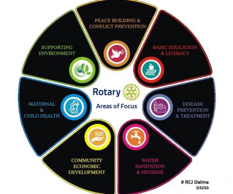 Nueva Rotaria, imposición del pin